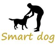 smart dogのlogo