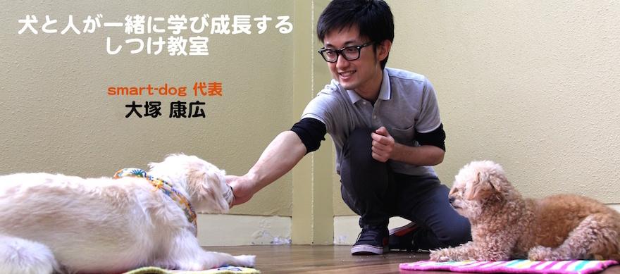 大阪で犬の訪問しつけ・幼稚園をご検討の方はsmart-dogへ